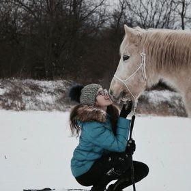 EquestrianAnn