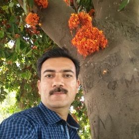 Dushyant Paliwal