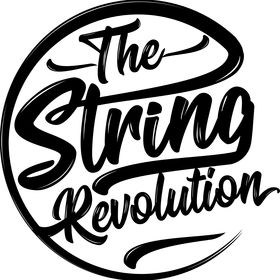 The String Revolution
