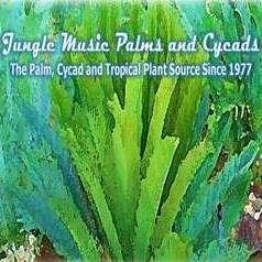 Jungle Music Palms, Cycads & Tropical Plants