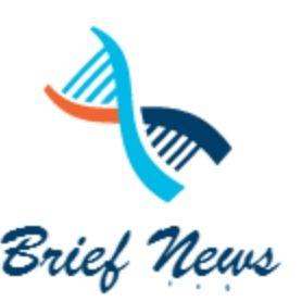 Brief News