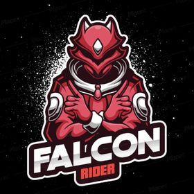 Falcon Rider