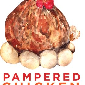 Pampered Chicken Mama | Backyard Chickens & Homesteading