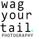 Wag Your Tail Photography