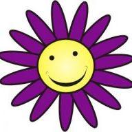 Purple Daisy Jewelry
