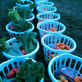 Bountiful Baskets