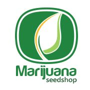 Marijuana Seedshop