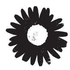 Daisy Chain, flowers