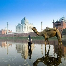 Viaje Rajasthan