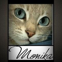 Mónika Rojas