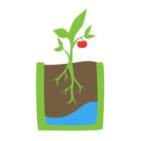 Urban Refuge Gardening