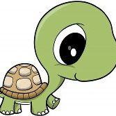 Turtlebaby Barton