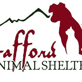 Stafford Animal Shelter, Livingston Montana