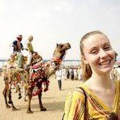 Royal Rajasthan Trip (www.royalrajasthantrip.com)