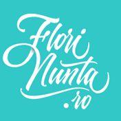 www.florinunta.ro