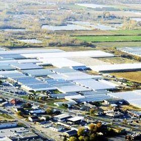 Greenhouse Depot Inc.