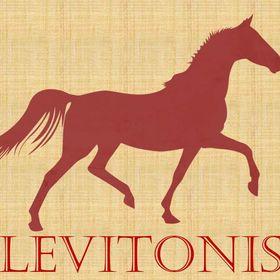 Levitonis - туры по Германии