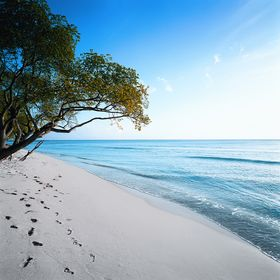 Almond Barbados