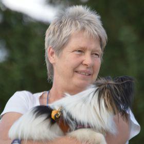 Mein lieber Hund - Die Hundeschule, wo Welpenerziehung und Hundetraining Spaß macht