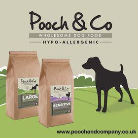 Pooch and Company