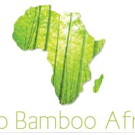 Eco Bamboo Africa