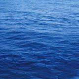 Deniz Özmen