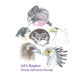 Raptor Taxon Advisory Group