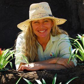 Sue Bampton