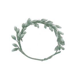 Un anillo para Eva