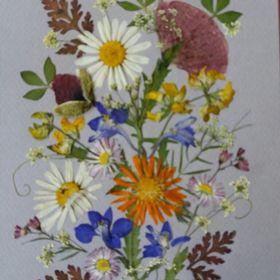 Pressed FlowerPeace Judit László