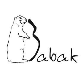 Babak1995