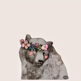 Maja Niedźwiedź