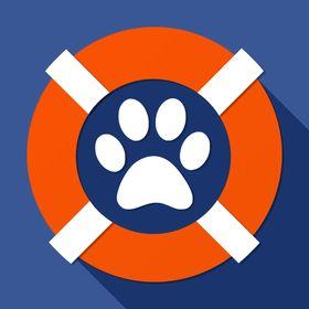 Animal Rescue Society Animalrescuesociety Profile Pinterest