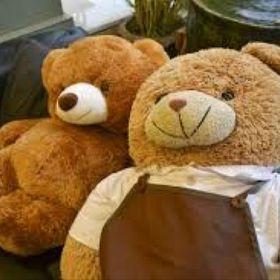 Teddypare