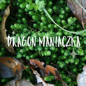 Dragon Maniaczka