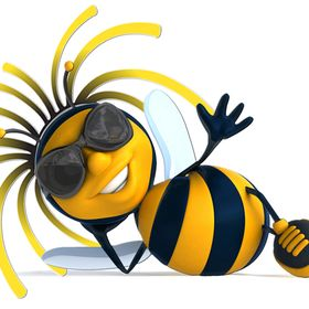 Central Texas Bee Rescue