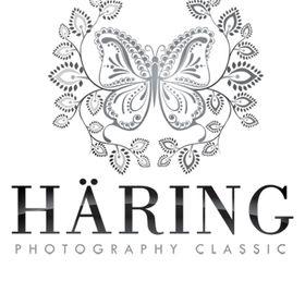 Haring Photography