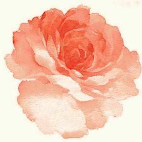 A. Rose King