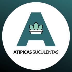 Atípicas Suculentas | Cuidados, reproducción, ideas y proyectos
