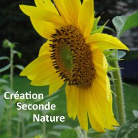 Création Seconde Nature