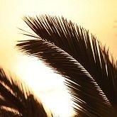 Ericeira Surf and Sunset Villa