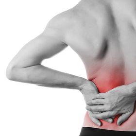 Better Back health