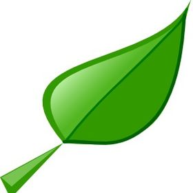 Green Leaf Marketing