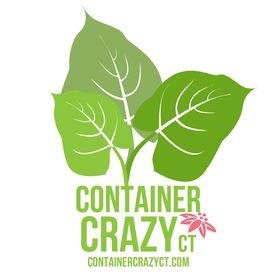 CONTAINER CRAZY CT