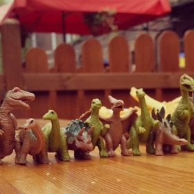 tyrannosaurus teacher