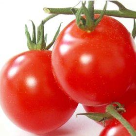 Tomateninsel - vegetarische Rezepte