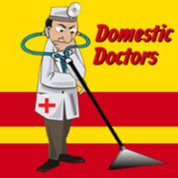 Domestic Doctors
