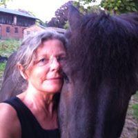 De 11 bedste billeder fra Tasker   Tasker, Stella mccartney