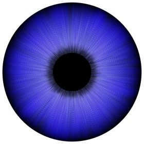 Thompson Optics