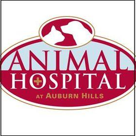 Animal Hospital at Auburn Hills